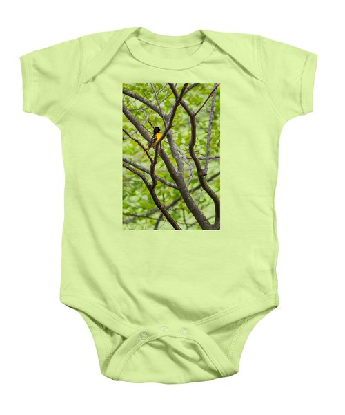 Baltimore Oriole Baby Onesie by Bill Wakeley