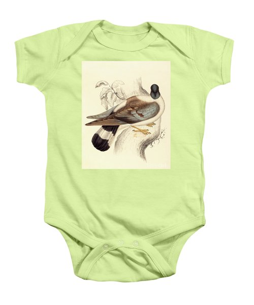 Columba Leuconota, Snow Pigeon Baby Onesie by Elizabeth Gould