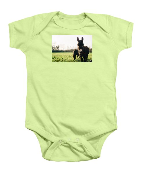 Donkey And Pony Baby Onesie by Pati Photography