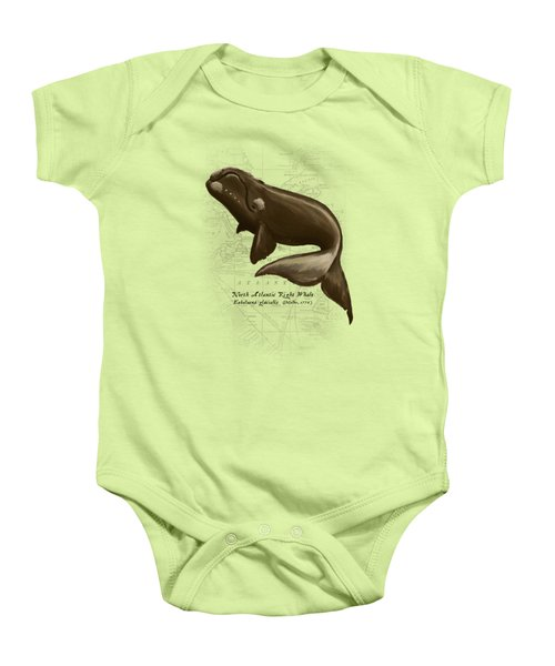 North Atlantic Right Whale Baby Onesie by Amber Marine