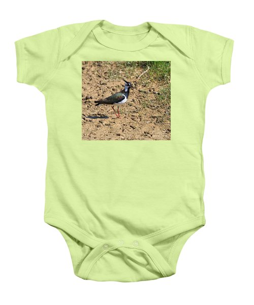 Northern Lapwing Baby Onesie by Louise Heusinkveld