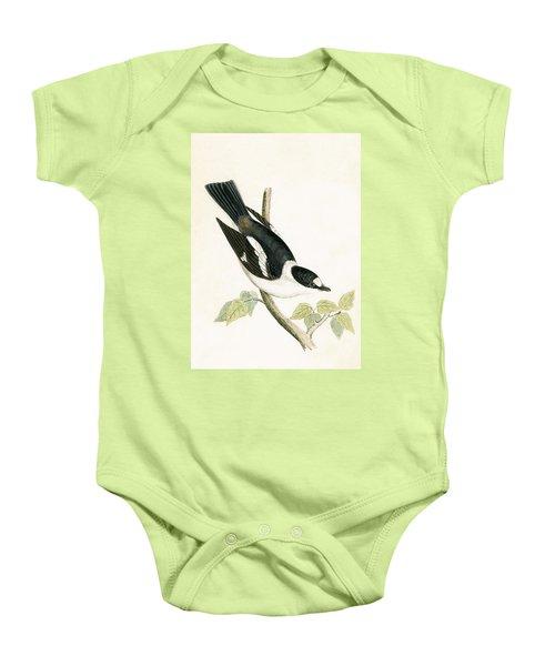 White Collared Flycatcher Baby Onesie by English School