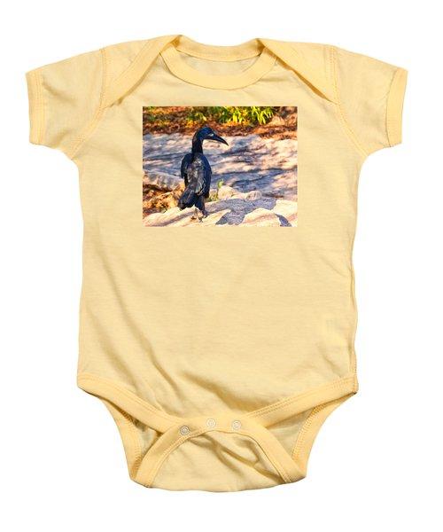 Abyssinian Ground Hornbill Baby Onesie by Chris Flees