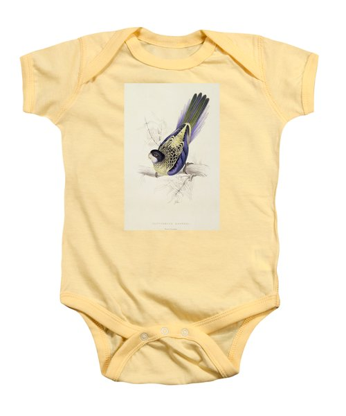 Browns Parakeet Baby Onesie by Edward Lear