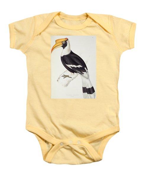 Great Hornbill Baby Onesie by John Gould