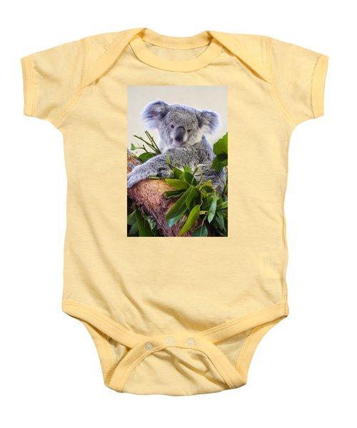 Koala On Top Of A Tree Baby Onesie by Chris Flees
