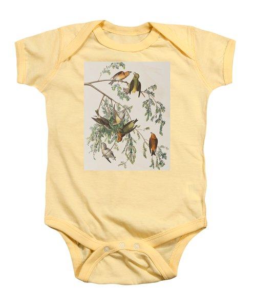 American Crossbill Baby Onesie by John James Audubon