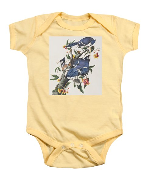Blue Jay Baby Onesie by John James Audubon