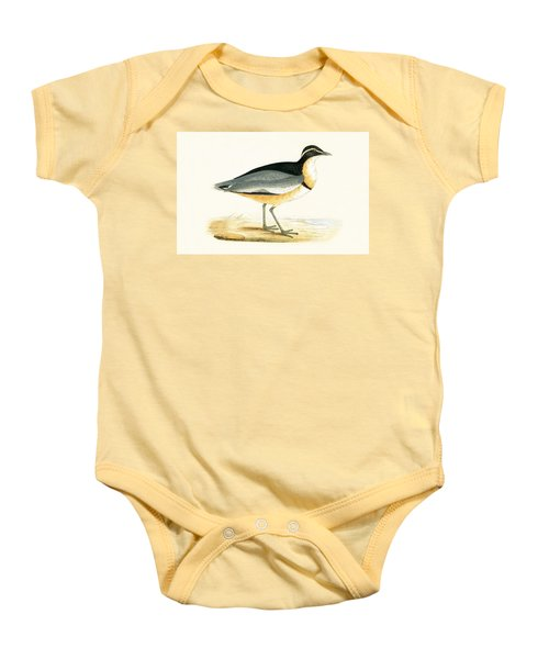 Black Headed Plover Baby Onesie by English School