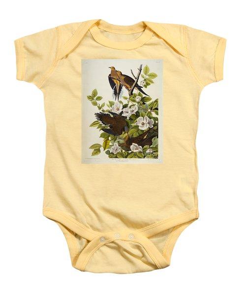 Carolina Turtledove Baby Onesie by John James Audubon