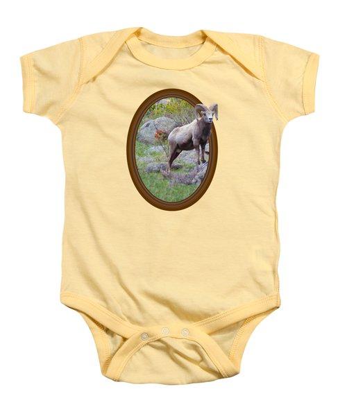 Colorado Bighorn Baby Onesie by Shane Bechler