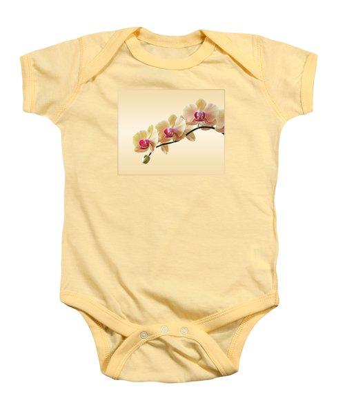 Cream Delight Baby Onesie by Gill Billington