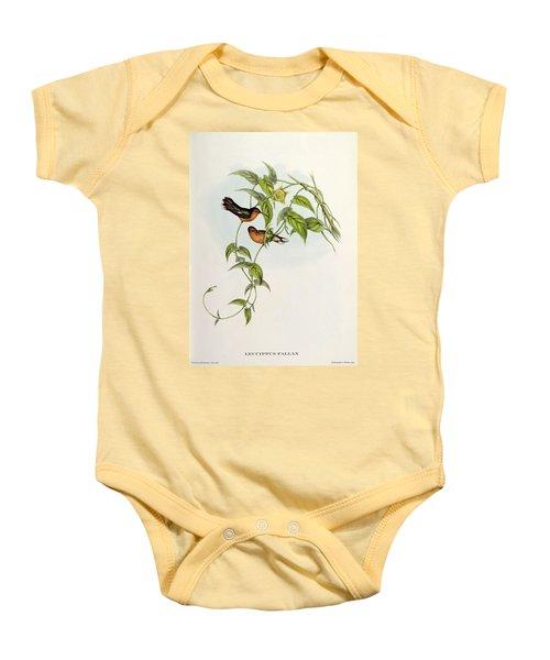 Leucippus Fallax Baby Onesie by John Gould