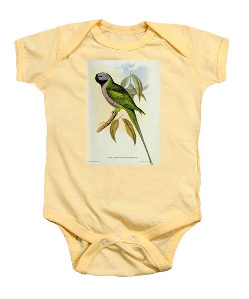Parakeet Baby Onesie by John Gould