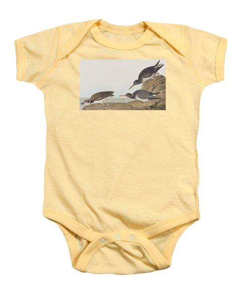 Purple Sandpiper Baby Onesie by John James Audubon