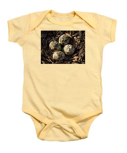 Quartet Of Killdeer Eggs By Jean Noren Baby Onesie by Jean Noren