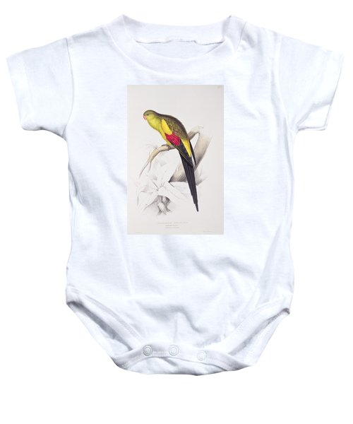 Black Tailed Parakeet Baby Onesie by Edward Lear