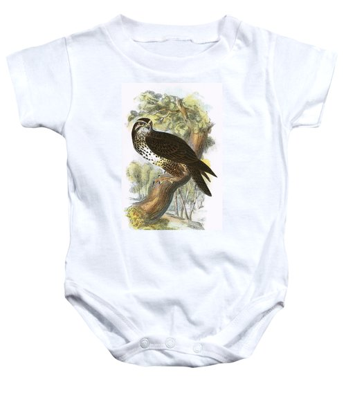 Common Buzzard Baby Onesie by English School
