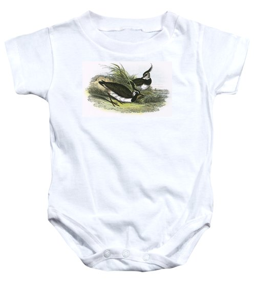 Lapwing Baby Onesie by English School