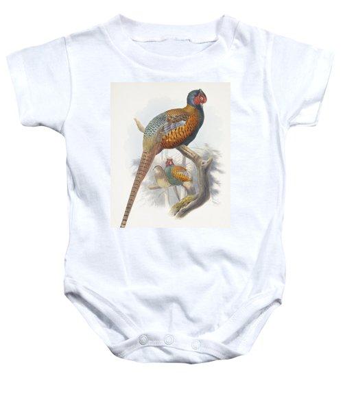 Phasianus Elegans Elegant Pheasant Baby Onesie by Daniel Girard Elliot