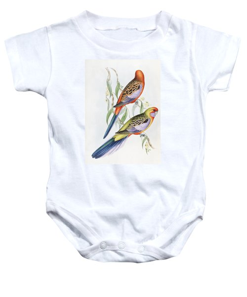 Platycercus Adelaidae From The Birds Of Australia Baby Onesie by John Gould