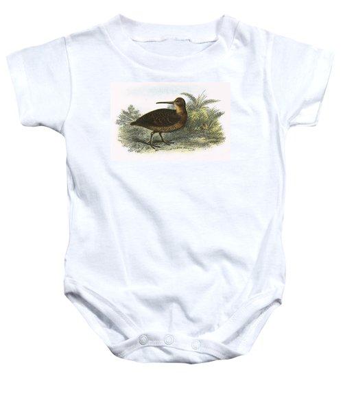 Woodcock Baby Onesie by English School
