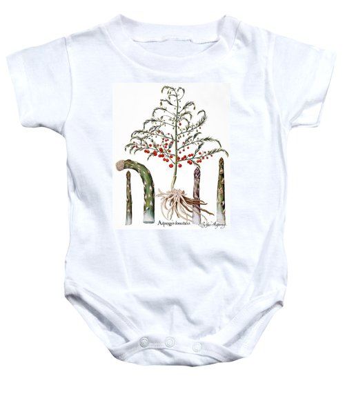 Botany: Asparagus, 1613 Baby Onesie by Granger