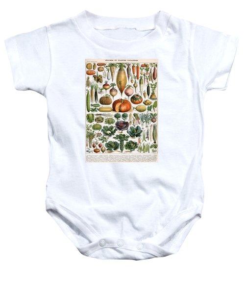 Illustration Of Vegetable Varieties Baby Onesie by Alillot