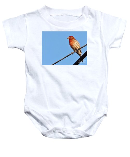 American Crossbill On Wire     Spring   Indiana   Baby Onesie by Rory Cubel