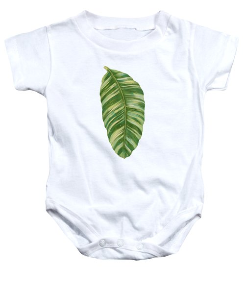 Rainforest Resort - Tropical Leaves Elephant's Ear Philodendron Banana Leaf Baby Onesie by Audrey Jeanne Roberts