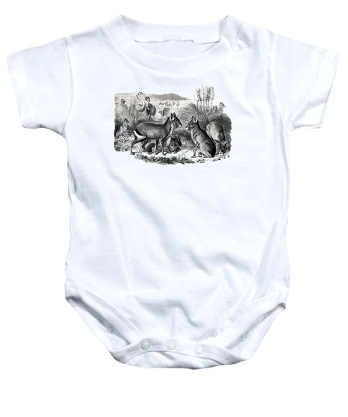 woodcut drawing of South American Maras Baby Onesie by The one eyed Raven