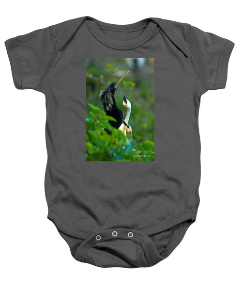 Anhinga Adult With Chicks Baby Onesie by Mark Newman