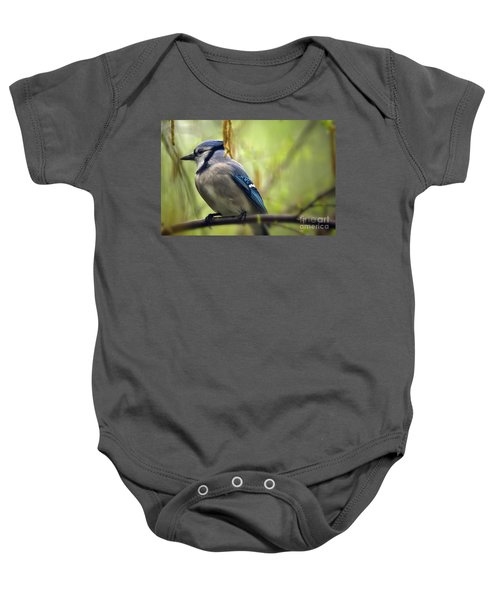 Blue Jay On A Misty Spring Day Baby Onesie by Lois Bryan