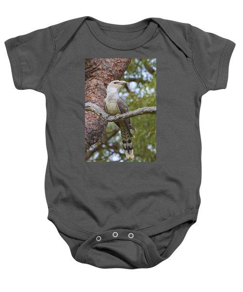 Channel-billed Cuckoo Fledgling Baby Onesie by Martin Willis