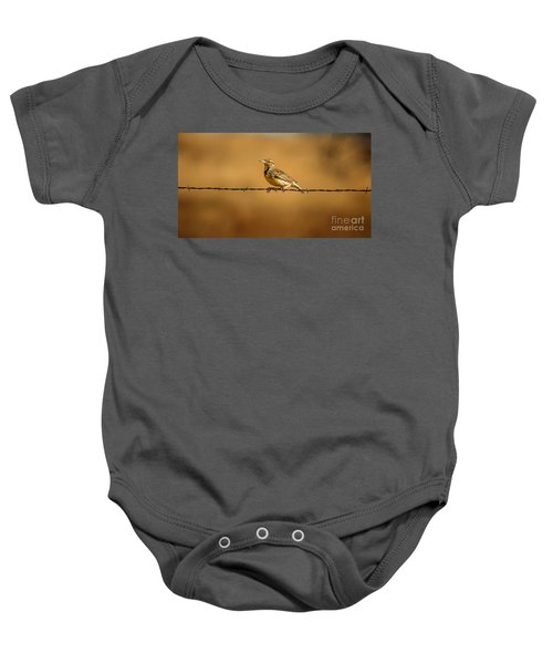 Meadowlark And Barbed Wire Baby Onesie by Robert Frederick