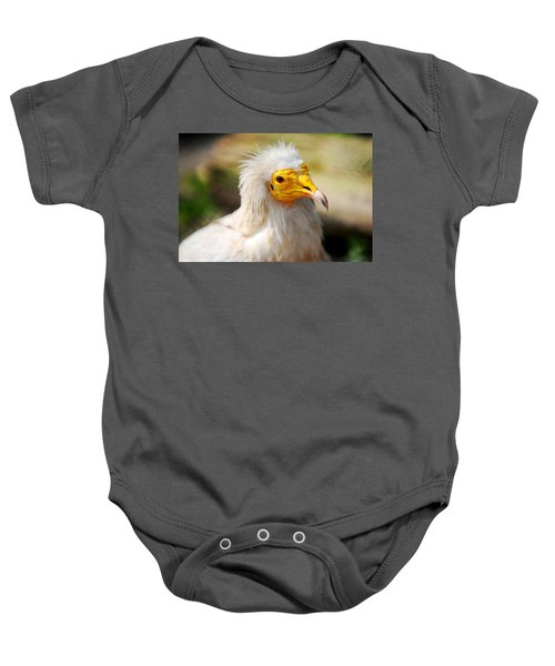 Pharaoh Chicken. Egyptian Vulture Baby Onesie by Jenny Rainbow