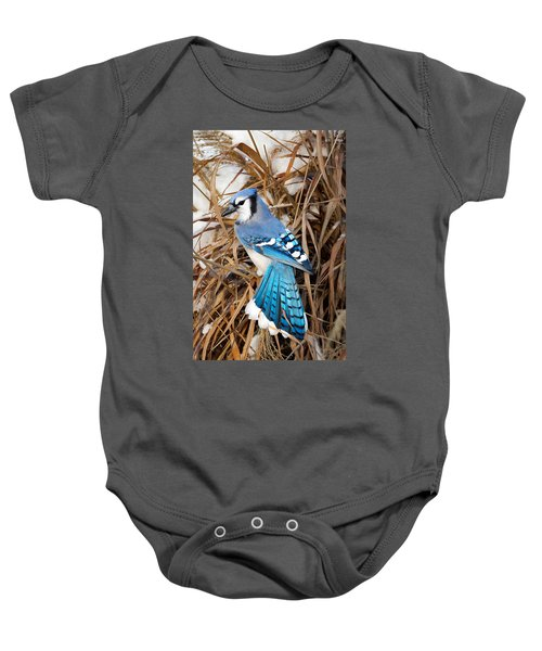 Portrait Of A Blue Jay Baby Onesie by Bill Wakeley