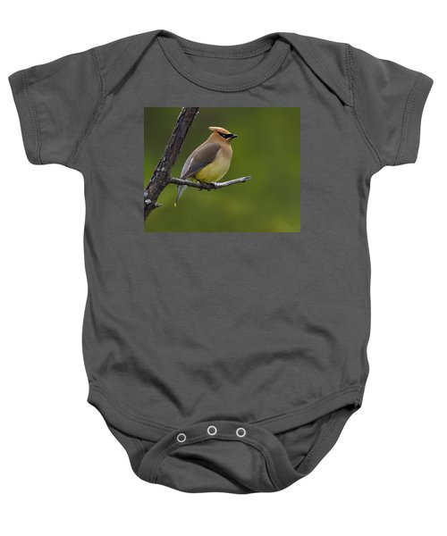 Wax On Baby Onesie by Tony Beck