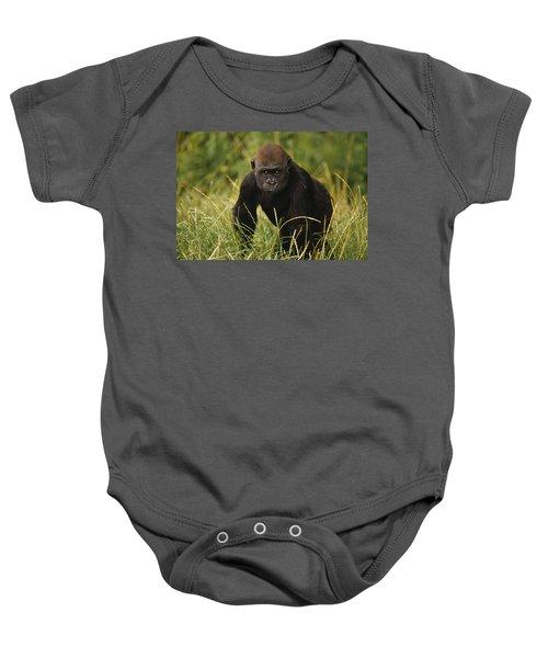 Western Lowland Gorilla Juvenile Baby Onesie by Gerry Ellis