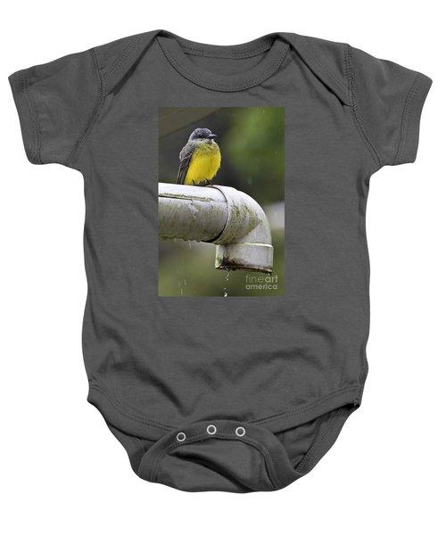 Grey-capped Flycatcher Baby Onesie by Heiko Koehrer-Wagner