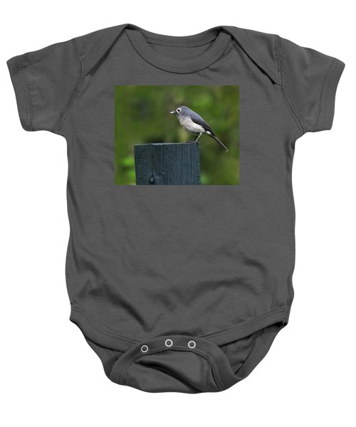 White-eyed Slaty Flycatcher Baby Onesie by Tony Beck