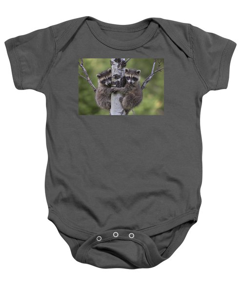 Raccoon Two Babies Climbing Tree North Baby Onesie by Tim Fitzharris