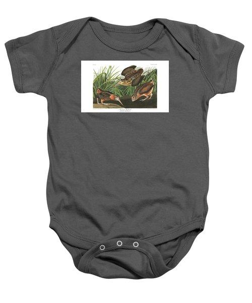 American Woodcock Baby Onesie by John Audubon