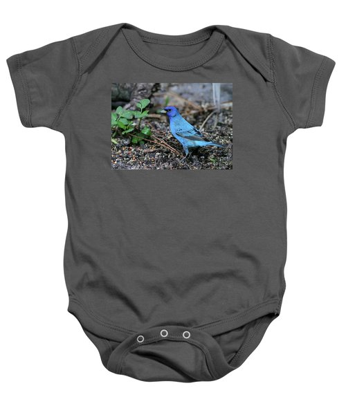 Beautiful Indigo Bunting Baby Onesie by Sabrina L Ryan