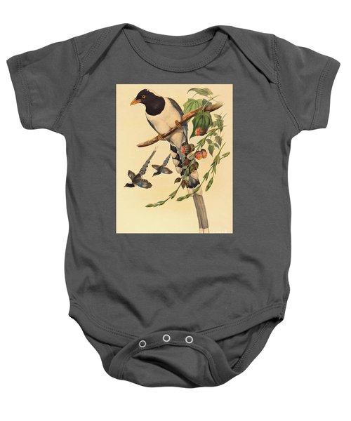 Blue Magpie, Urocissa Magnirostris Baby Onesie by John Gould