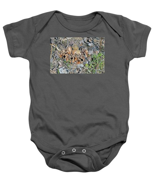 Just Hatched American Woodcock Chicks Baby Onesie by Asbed Iskedjian