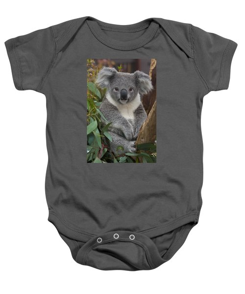 Koala Phascolarctos Cinereus Baby Onesie by Zssd