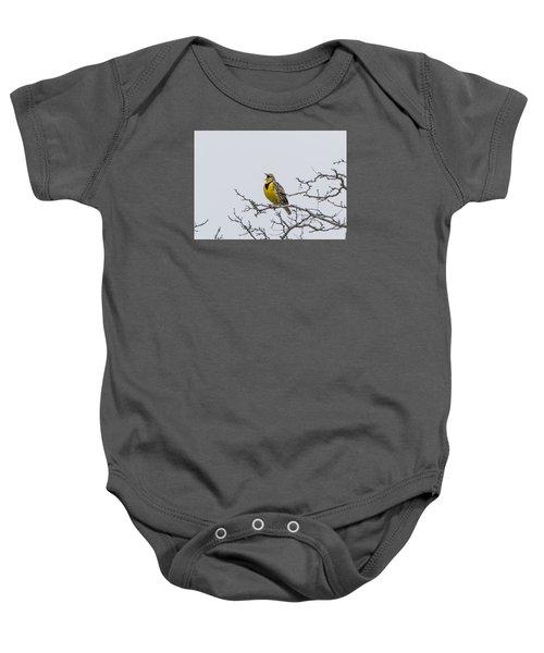 Meadowlark In Tree Baby Onesie by Marc Crumpler