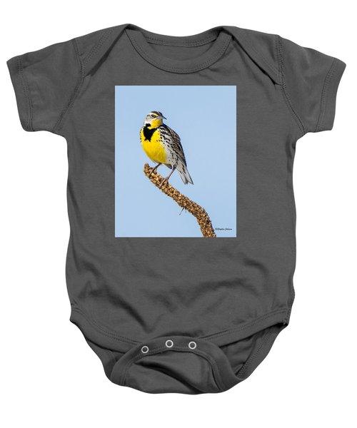 Meadowlark On Mullein Stalk Baby Onesie by Stephen Johnson