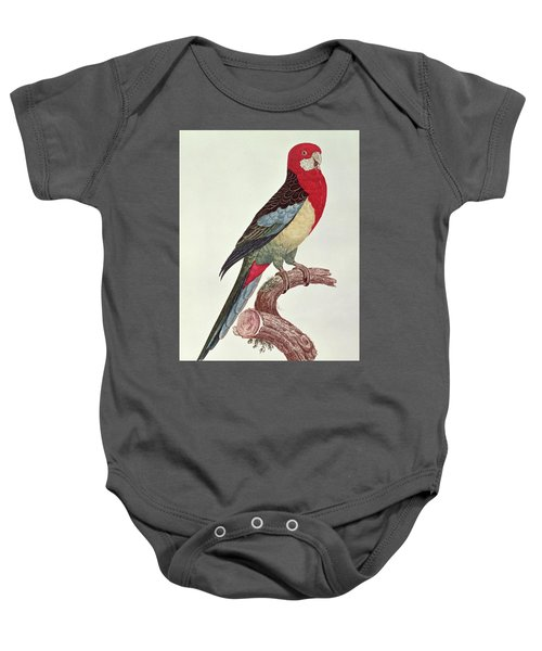 Omnicolored Parakeet Baby Onesie by Jacques Barraband